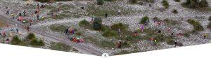 Trillion Trees Planting @ Whiteman Park