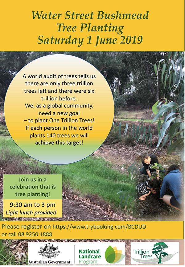 Bushmead--Water-Street1-June-2019 Tree Planting