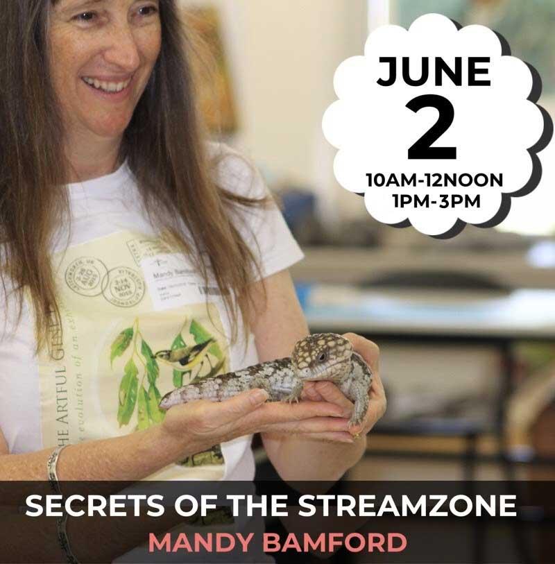 Secrets-of-the-Streamzone