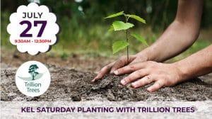Lesmurdie Saturday Planting with Trillion Trees @ Lesmurdie | Lesmurdie | Western Australia | Australia
