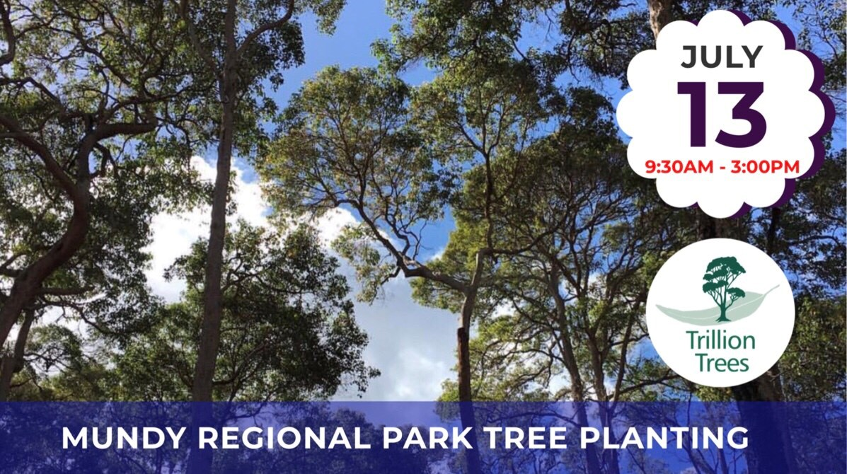 Mundy Regional Park Tree Planting 13Jul19