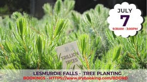 Lesmurdie Falls Tree Planting with Trillion Trees @ Lesmurdie Falls - Meeting Point to be confirmed | Forrestfield | Western Australia | Australia