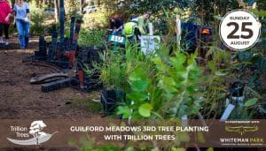 Guildford Meadows 2nd Tree Planting with Trillion Trees @ Guildford Meadows 2nd Tree Planting | Caversham | Western Australia | Australia
