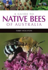 Native Bee Talk @ The Studio @ Trillion Trees | Hazelmere | Western Australia | Australia
