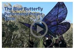 Blue Butterfly Video