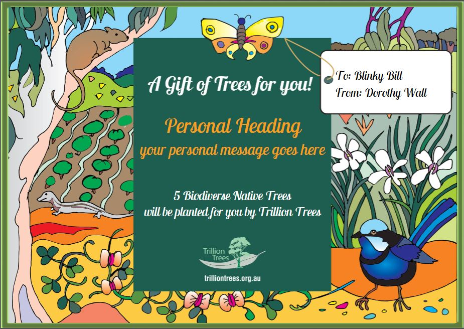 Christmas Gift Card Trillion Trees