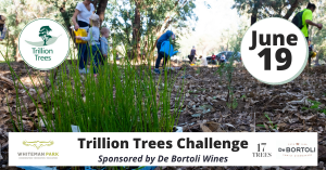 Trillion Trees Challenge @ Whiteman Park | Whiteman | Western Australia | Australia